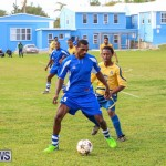St David's vs Young Men Social Club Football Bermuda, January 11 2015-54