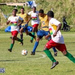 St David's vs Boulevard Bermuda, January 4 2015-101