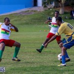St David's vs Boulevard Bermuda, January 4 2015-19