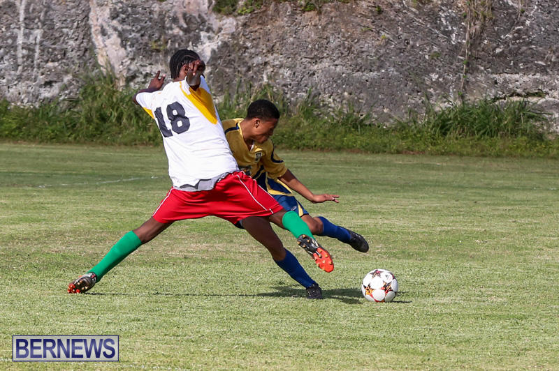 St-Davids-vs-Boulevard-Bermuda-January-4-2015-29
