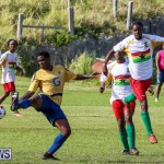 St David's vs Boulevard Bermuda, January 4 2015-35