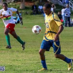 St David's vs Boulevard Bermuda, January 4 2015-37
