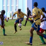 St David's vs Boulevard Bermuda, January 4 2015-59