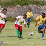 St David's vs Boulevard Bermuda, January 4 2015-8