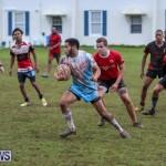 Stephen Edwards Memorial Bermuda, January 1 2015-14
