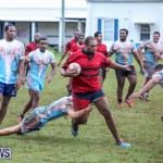 Stephen Edwards Memorial Bermuda, January 1 2015-21