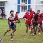 Stephen Edwards Memorial Bermuda, January 1 2015-9