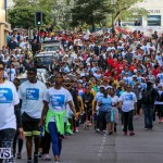 Argus Walk Bermuda, February 22 2015-10
