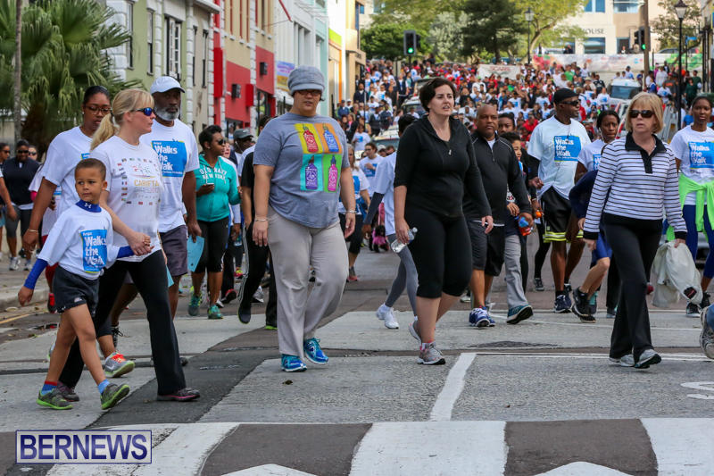 Argus-Walk-Bermuda-February-22-2015-15