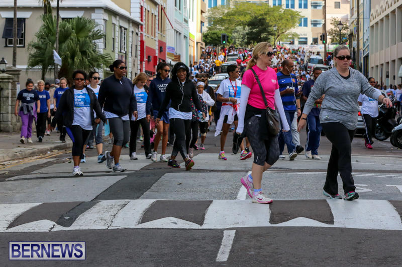 Argus-Walk-Bermuda-February-22-2015-16