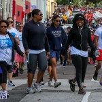 Argus Walk Bermuda, February 22 2015-17