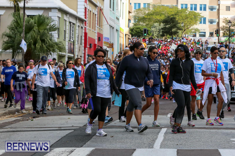 Argus-Walk-Bermuda-February-22-2015-18