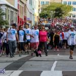 Argus Walk Bermuda, February 22 2015-20