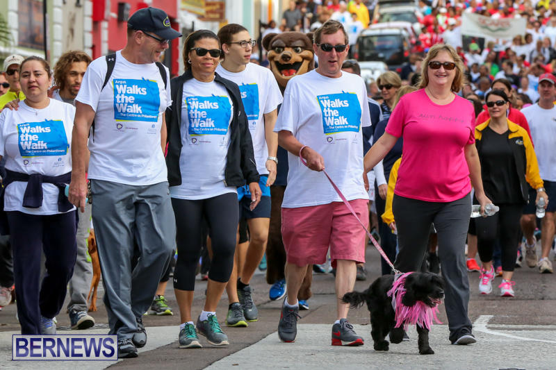 Argus-Walk-Bermuda-February-22-2015-21