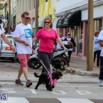 Argus Walk Bermuda, February 22 2015-23