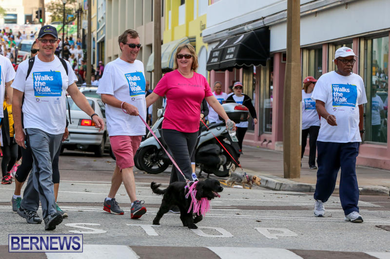 Argus-Walk-Bermuda-February-22-2015-23