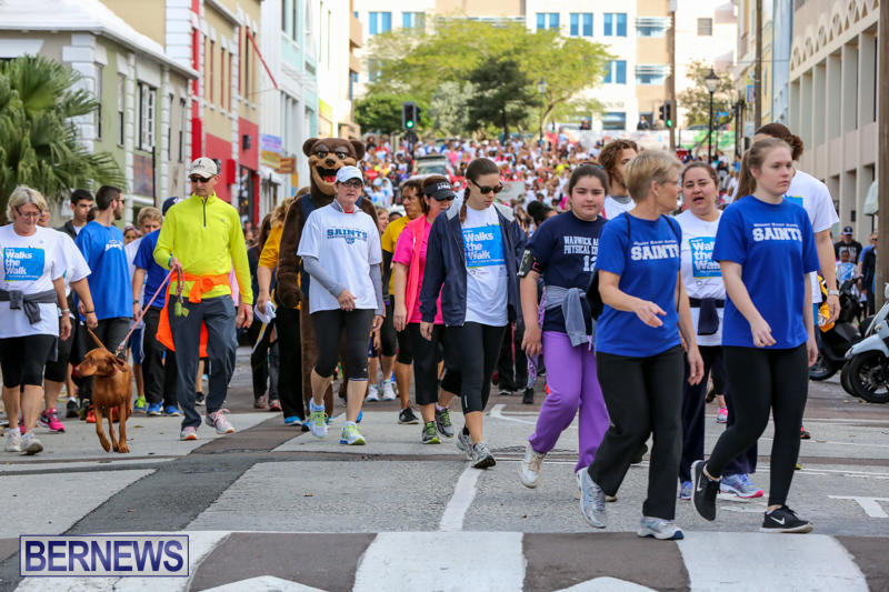 Argus-Walk-Bermuda-February-22-2015-25