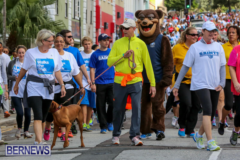 Argus-Walk-Bermuda-February-22-2015-26