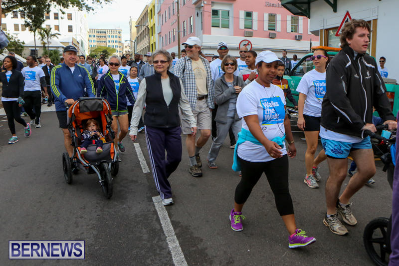 Argus-Walk-Bermuda-February-22-2015-43