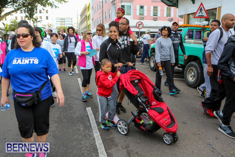 Argus-Walk-Bermuda-February-22-2015-53