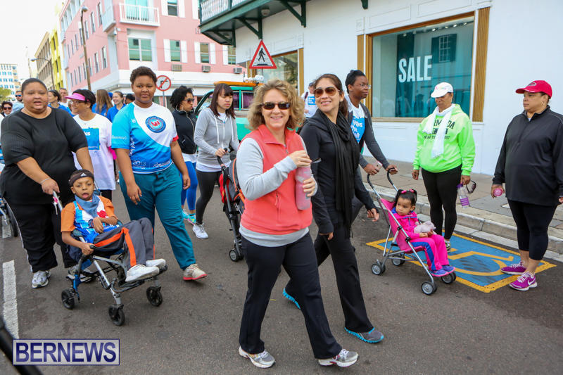 Argus-Walk-Bermuda-February-22-2015-73