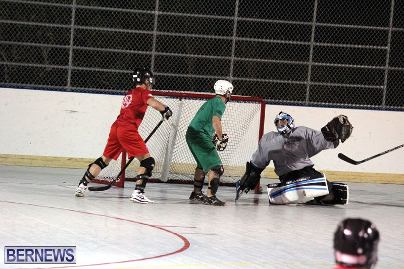 Ball-Hockey-2015Feb22-1st-game-1