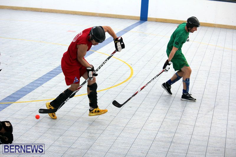 Ball-Hockey-2015Feb22-1st-game-10