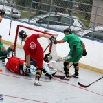 Ball Hockey 2015Feb22 1st game (14)