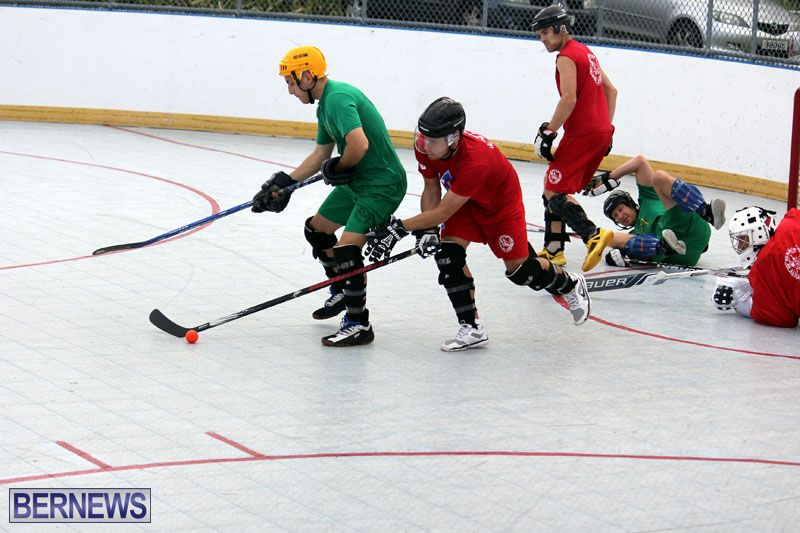 Ball-Hockey-2015Feb22-1st-game-18