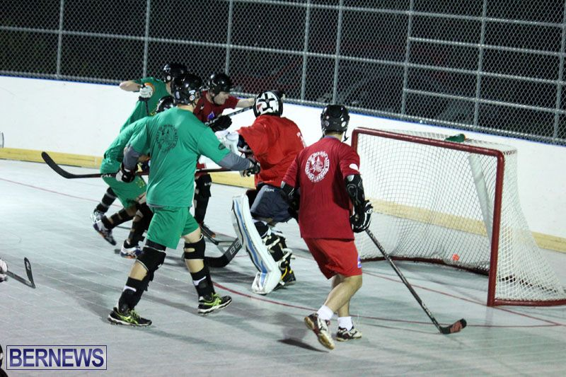 Ball-Hockey-2015Feb22-1st-game-3