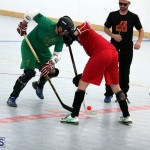 Ball Hockey 2015Feb22 1st game (6)