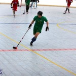 Ball Hockey 2015Feb22 1st game (7)