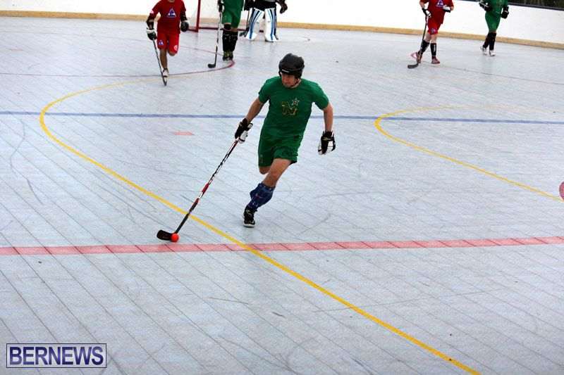 Ball-Hockey-2015Feb22-1st-game-7