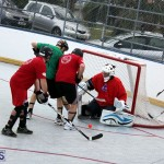 Ball Hockey 2015Feb22 1st game (9)
