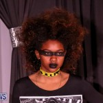 CedarBridge Academy Spritz Hair Show Bermuda, January 31 2015-43