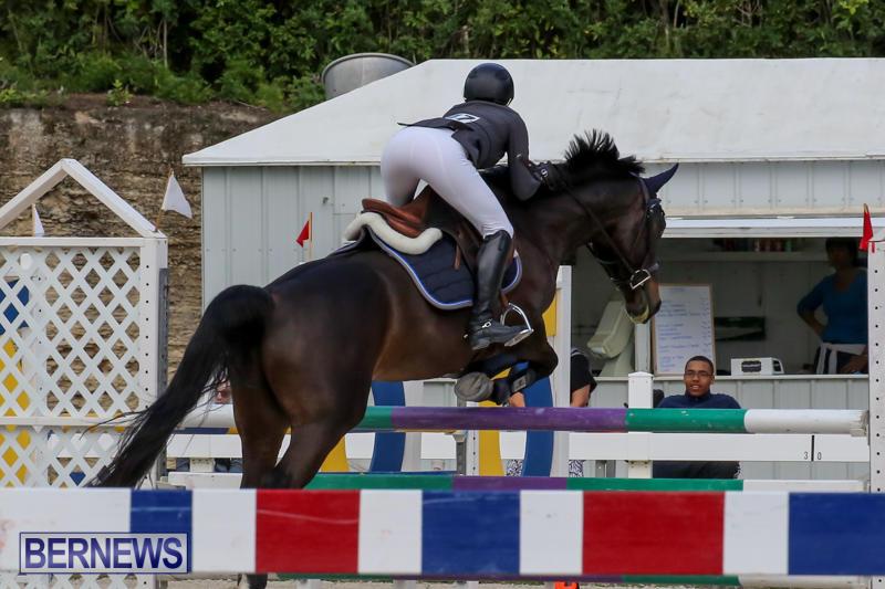 FEI-World-Jumping-Challenge-Bermuda-February-22-2015-11