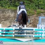 FEI World Jumping Challenge Bermuda, February 22 2015-2