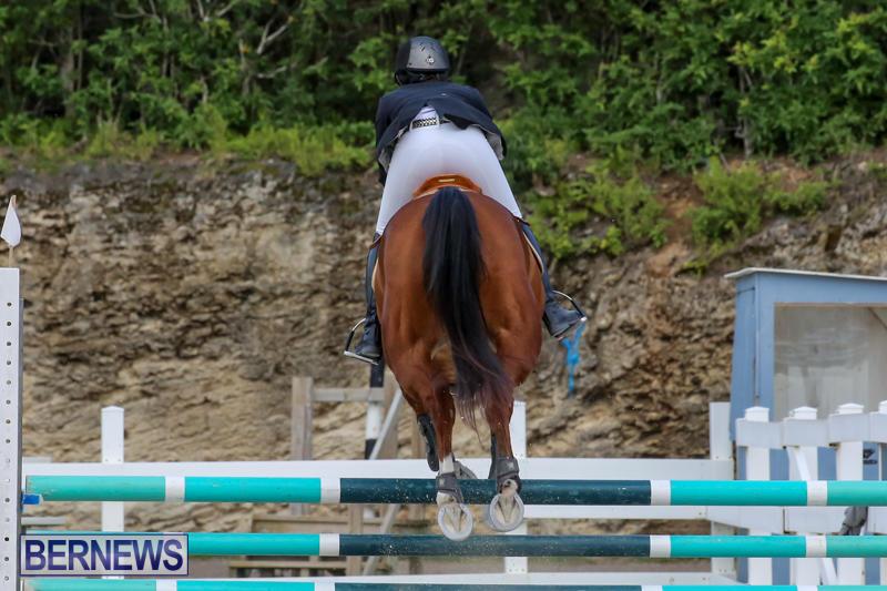 FEI-World-Jumping-Challenge-Bermuda-February-22-2015-21