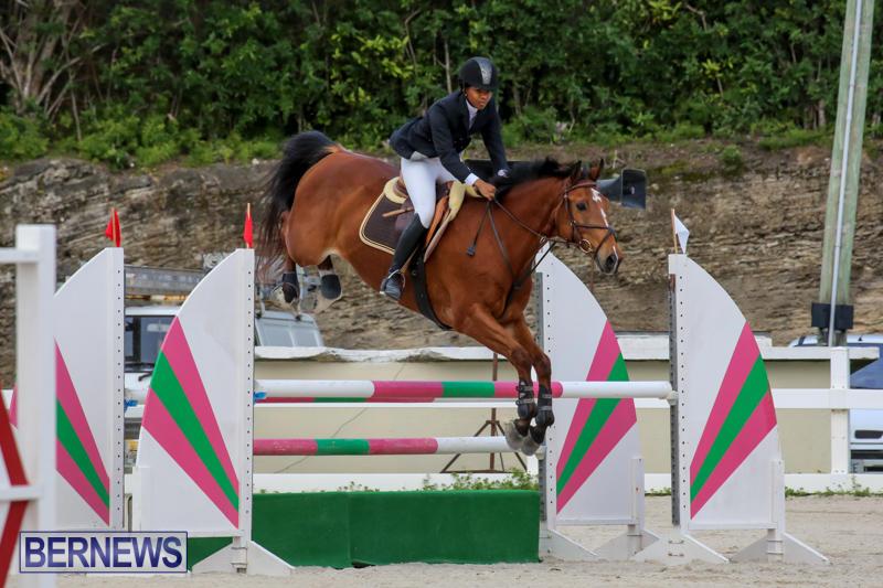 FEI-World-Jumping-Challenge-Bermuda-February-22-2015-26