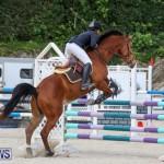 FEI World Jumping Challenge Bermuda, February 22 2015-33