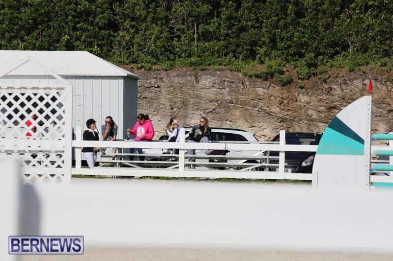 FEI-World-Jumping-Challenge-Bermuda-February-22-2015-60