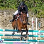 FEI World Jumping Challenge Bermuda, February 22 2015-78