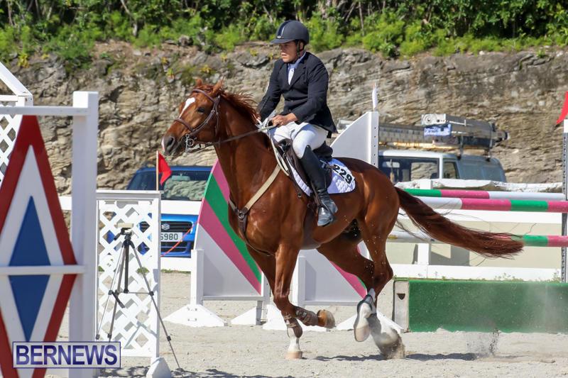 FEI-World-Jumping-Challenge-Bermuda-February-22-2015-86