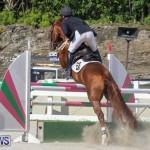 FEI World Jumping Challenge Bermuda, February 22 2015-88
