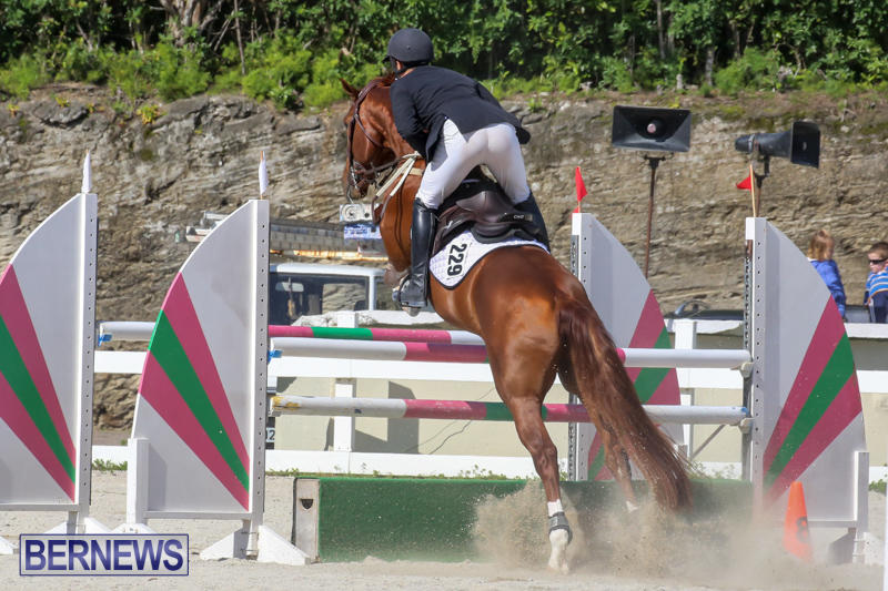 FEI-World-Jumping-Challenge-Bermuda-February-22-2015-88