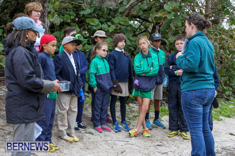 National-Trust-Walk-Spittal-Pond-Bermuda-February-17-2015-11