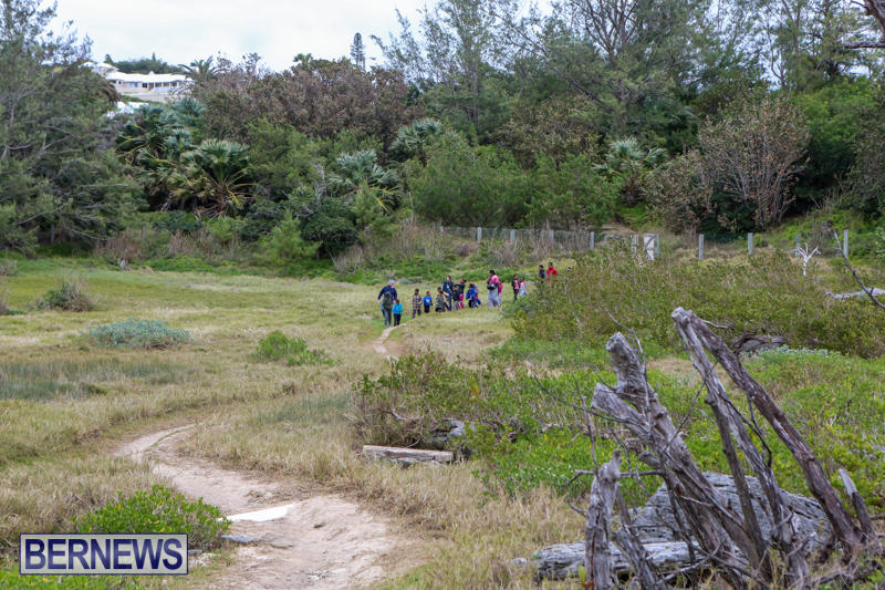 National-Trust-Walk-Spittal-Pond-Bermuda-February-17-2015-12