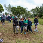 National Trust Walk Spittal Pond Bermuda, February 17 2015-2