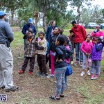 National Trust Walk Spittal Pond Bermuda, February 17 2015-6