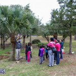 National Trust Walk Spittal Pond Bermuda, February 17 2015-8